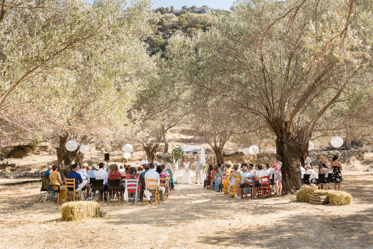olive grove wedding in Crete
